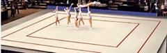 Cheap Rhythmic Gymnastics Floor Rhythmic Gymnastics Mat  Rhythmic Gym Mat