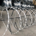 Electric Razor Wire