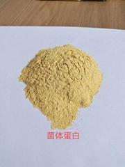 味精渣菌体蛋白粉富含氨基酸浅黄粉状禽牧饲料添加剂