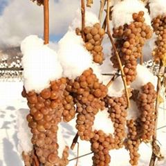 冰酒 冰葡萄酒 威代尔冰葡萄酒 长白山冰葡萄酒