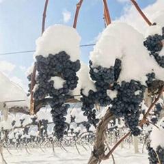 冰酒 冰葡萄酒 北冰紅葡萄酒 長白山冰葡萄酒