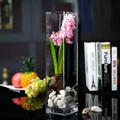 Hot Sale Glass Vase Home Decor