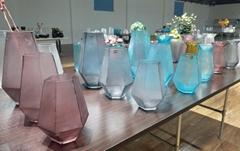 Home Docor Flower Glass Vase