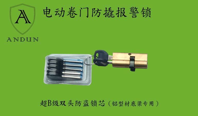 供應電動捲簾門用地鎖--鎖芯 2