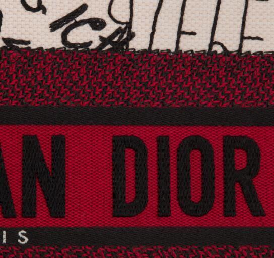 Dior Book Tote with Dioramour Graffiti handbag