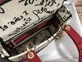Dior Medium Lady D-Lite Dioramour Bag