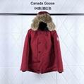 Canada Goose CHATEAU PARKA Fashion snow outwears