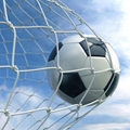football training net