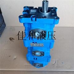 長江三聯齒輪油泵CBY2025/2025/2010-2FR