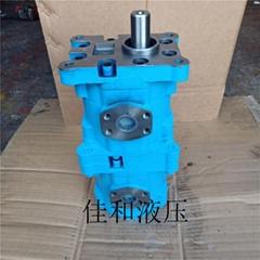 CBY3050/K1010-A2FR長江雙聯齒輪油泵