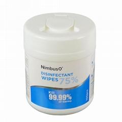 Hot-selling barreled 100pcs wet wipes/ paper towel