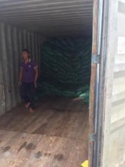 Standard rice export 5451