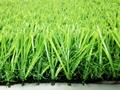 Artificial landscape  grass  1
