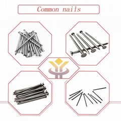 Common nail 1inch-6inch high quality low