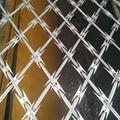 Ga  anized Razor Wire Coils With Loops