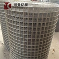 Hot-dipped galvanized PVC Welded wire