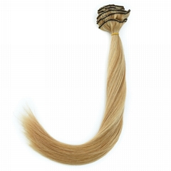 Welf with Clip Hair Extensions