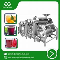 Double channel peeling and pitting machine automatic juice making machine
