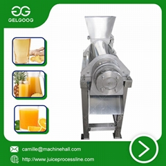 Fruit Juice Extraction Machine small scale juice making machine low price