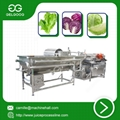 Vortex Type Vegetable Washing Machine