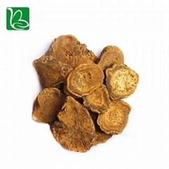 Da huang dried herbal medicine Rheum officinale palmatum L.