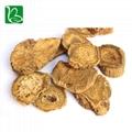 Da huang dried herbal medicine Rheum officinale palmatum L. 2
