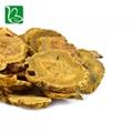 Da huang dried herbal medicine Rheum officinale palmatum L. 3