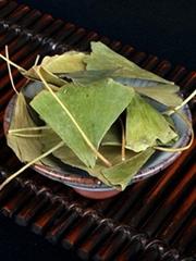 Dried ginkgo leaf for hemiplegia Chinese herbal ginkgo dried leaves