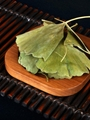 Dried ginkgo leaf for hemiplegia Chinese herbal ginkgo dried leaves  3