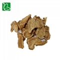 Traditional Chinese medicine saussurea costus kuth root for invigorating stomach 4