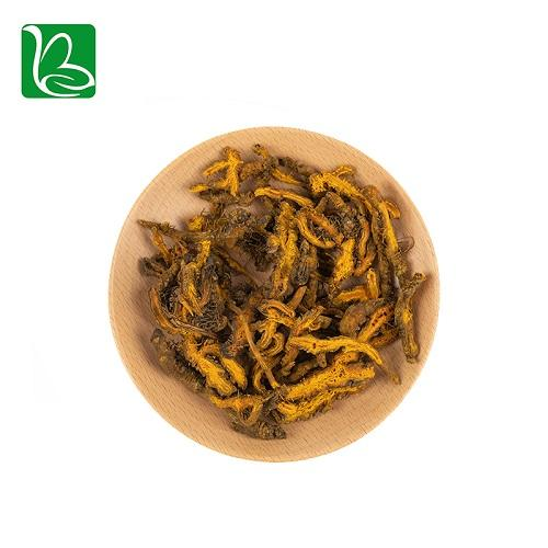 Coptis chinensis rizoma traditional Chinese medicine herbs Rhizoma Coptidis heal 1