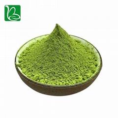 Herbal horny goat weed epimedium extract powder icariin 98% CAS 489-32-7