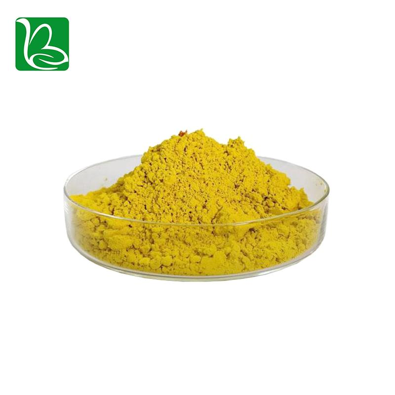 Drotrong high quality phellodendron amurense extract berberine sulphate 98% 2