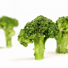 Hot sale freeze dried vegetables nutrition supplier freeze-dried broccoli with p