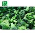 Hot sale freeze dried vegetables nutrition supplier freeze-dried broccoli with p 3