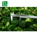 Hot sale freeze dried vegetables nutrition supplier freeze-dried broccoli with p 4