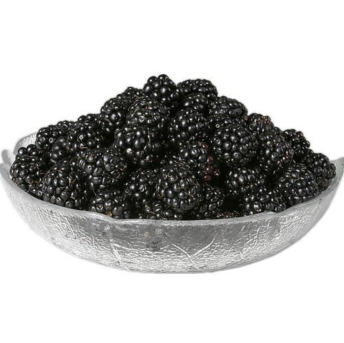 100% natural dried black mulberries health fruit dry mulberry 1