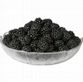 100% natural dried black mulberries