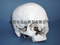 尼龙3D打印 PA3D打印 聚