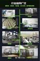 节能全自动蒸汽发生器 3