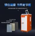 48kw電加熱蒸汽發生器