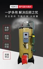 100kg燃氣蒸汽發生器