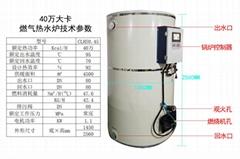 40萬大卡燃氣燃油天然氣液化氣采暖熱水鍋爐