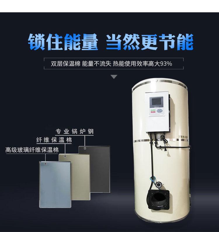 40万大卡燃气燃油天然气液化气采暖热水锅炉 2