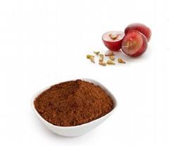 Pure Procyanidins 100% Organic Grape Seed Extract Powder Supplement