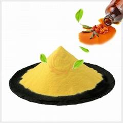 Sea Buckthorn Fruit Oil Powder