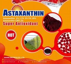 Astaxanthin  Haematococcus Pluvialis