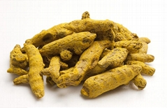 Turmeric Roots Extracts