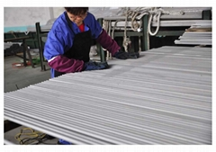 TP316 TP316L  Cold Roll Austenitic Steel Seamless Tub For Boilerse