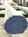 Stainless Seamless Steel Tube Annealed